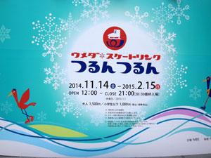 2014-11-25b.jpg