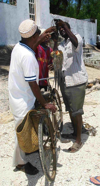 Fischhandler am Strand