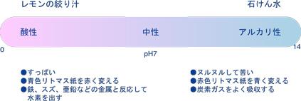 ph3.jpg