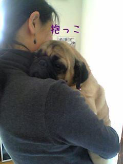 抱っこ団吉