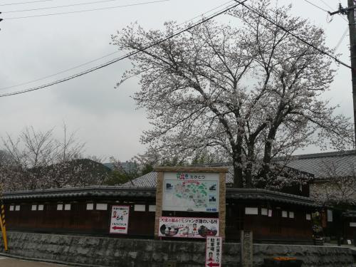 児童公園①
