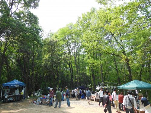 陽楽の森(春)③