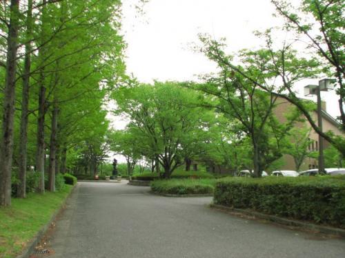 かつらぎの森(社会教育センター)