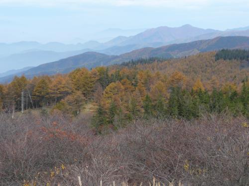 高ボッチ高原からの黄葉