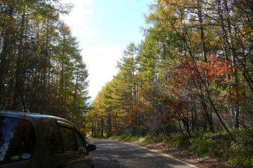 観音平への山道