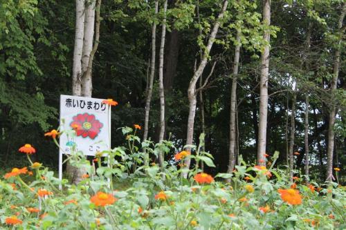 IMG_6373+AZUKI.jpg