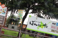 IMG_7193+AZUKI.jpg