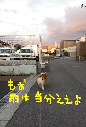 20130904-5.jpg