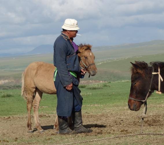 ニルゲイ、馬 -20