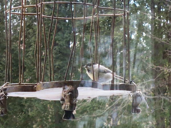 meon農苑 ロングパリッシュ コガラ