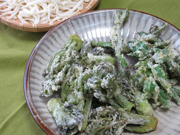 山菜 タラの芽のテンプラ ウドの天ぷら