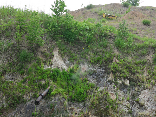 西山山麓火口散策路 第1展望台付近