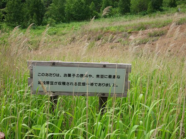 西山山麓火口散策路 畑の跡