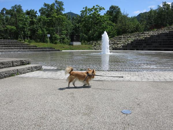 旭山記念公園 噴水