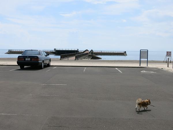 豊浦海浜公園キャンプ場 突堤
