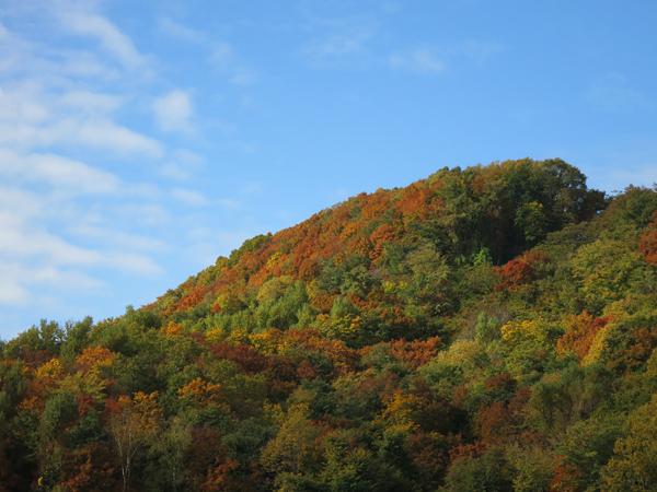 穴の川 ハーブの小径 紅葉