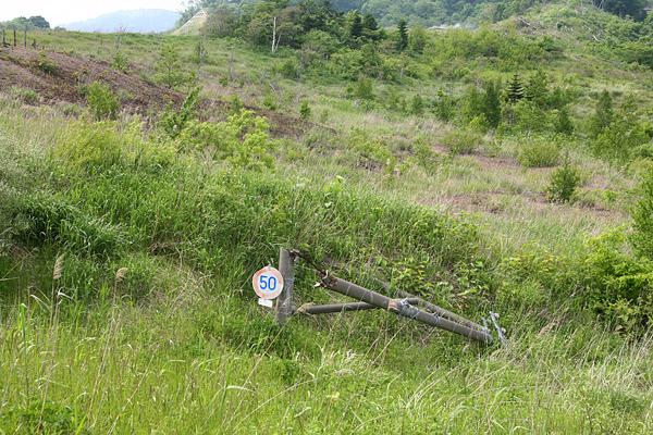 西山山麓火口散策路 折れた電柱
