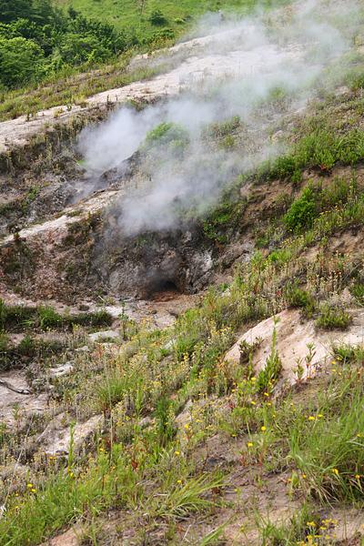 西山山麓火口散策路 新しい地熱帯