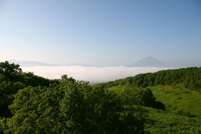 雲海 羊蹄山