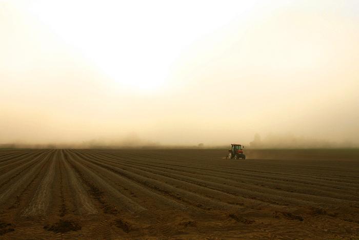 サイロ展望台付近 トラクター 畑 霧