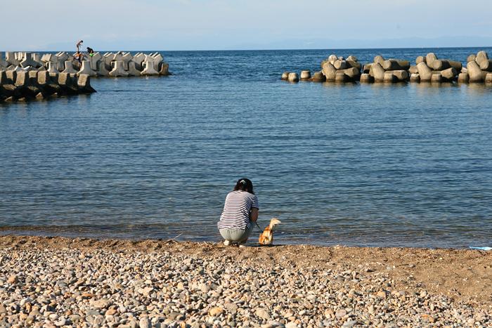 朝里海岸 茶太郎
