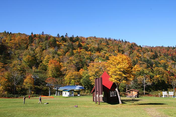 札幌国際スキー場 紅葉 風景