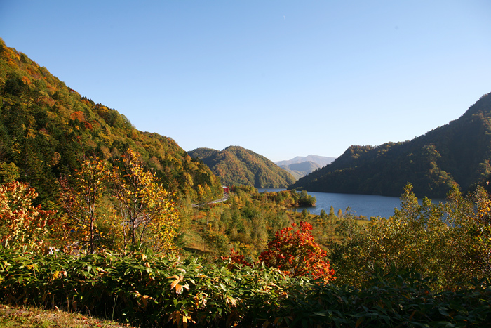 さっぽろ湖 展望台 紅葉