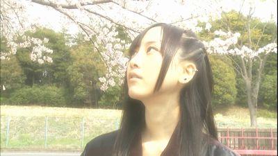 桜ゲキカラさん
