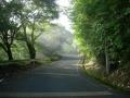 130815ガリバー旅行村バンガロー