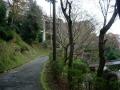 151129善峯寺から杉谷方面へ上る