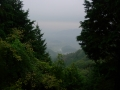 131103御斉峠への上り3