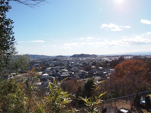 hayakawa11.jpg