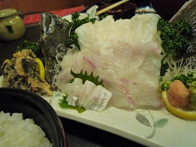 shizuoka_20140122_003.jpg