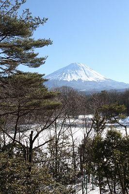 yamanashi_20140206_009.jpg