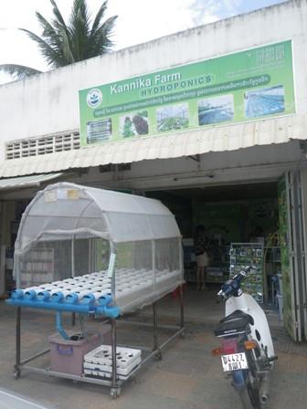 Kannika Farm