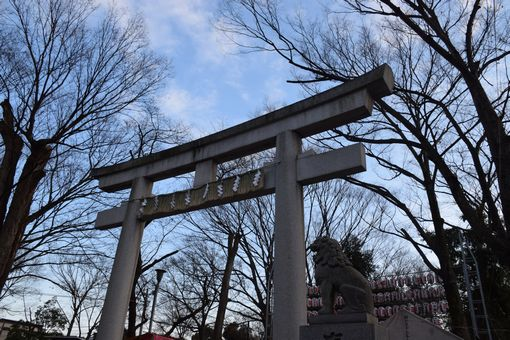 014-torii.jpg
