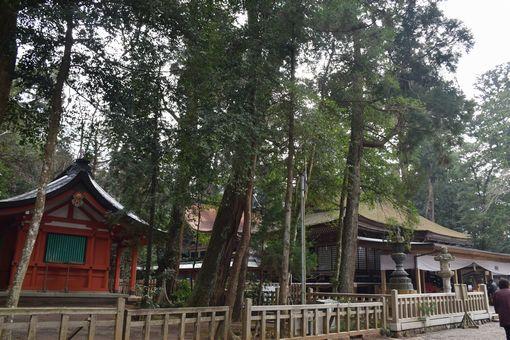 021-鹿島神宮