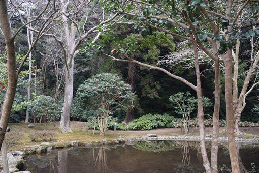 029-鹿島神宮