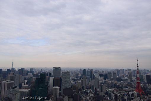 025-スカイツリー東京タワー