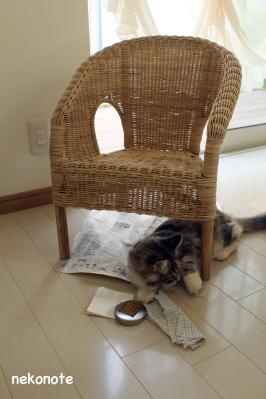 藤椅子に蜜ろうワックス