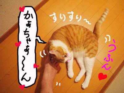 20130801_04.jpg