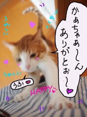 20131016_01.jpg