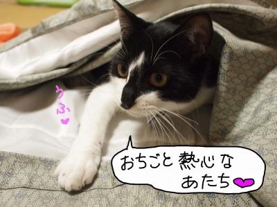 20131020_02_011.jpg