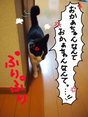 20131127_01_011.jpg