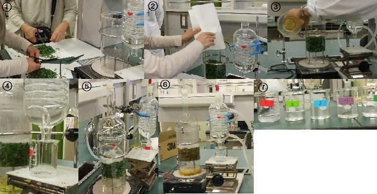 レモングラス水蒸気蒸留法