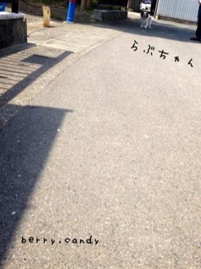 image_20130506164849.jpg