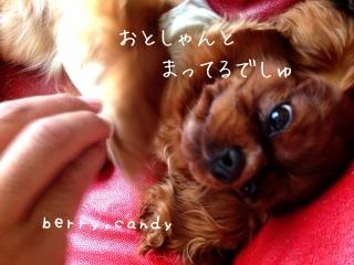 image_20130601111216.jpg