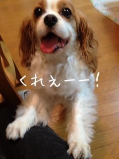image_20130604195829.jpg