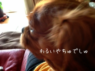 image_20130607230920.jpg