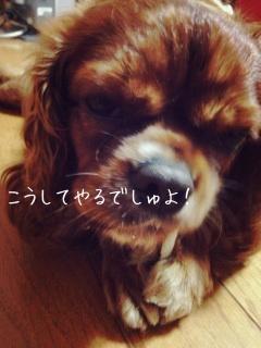 image_20130705185818.jpg